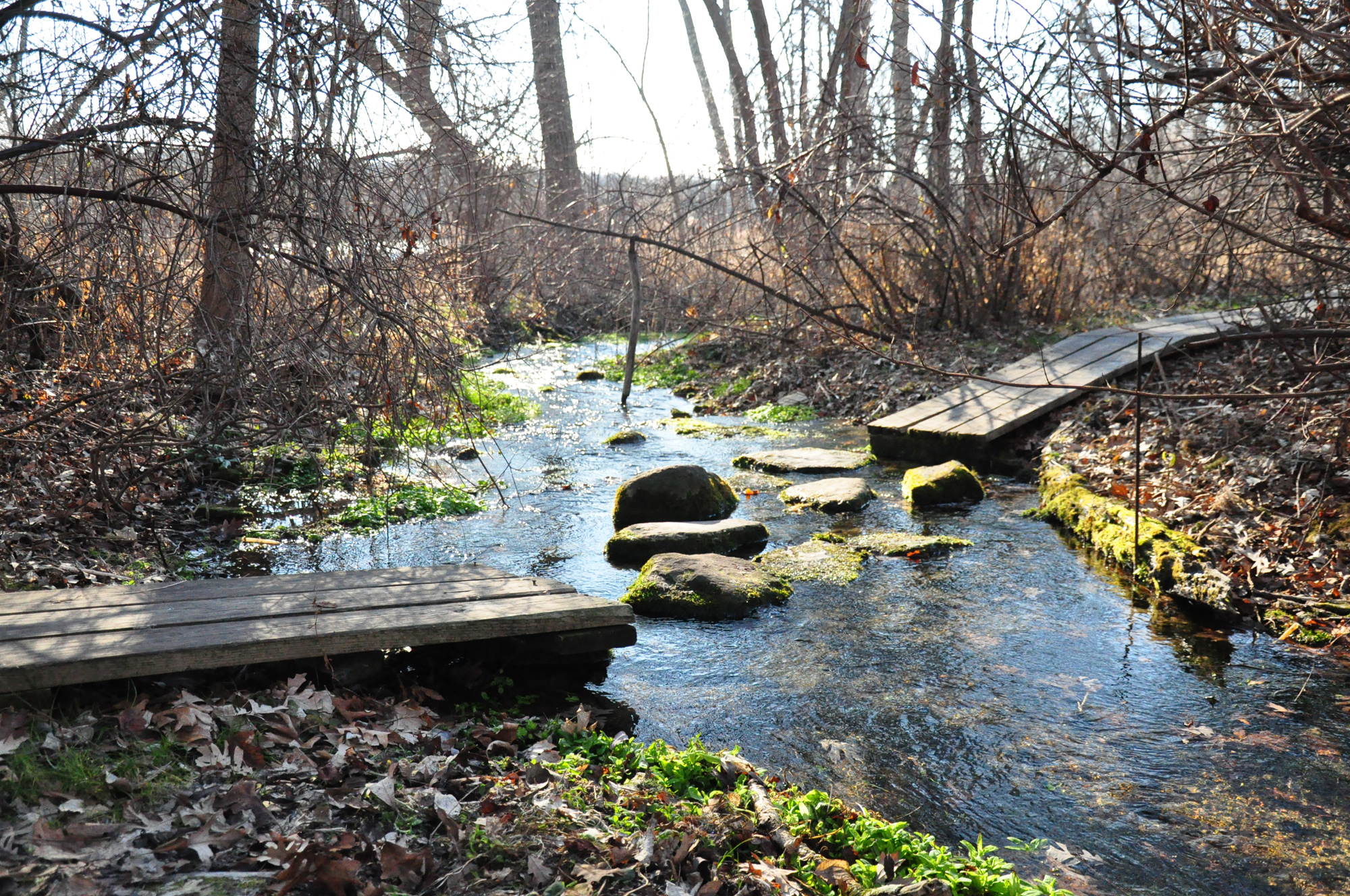 Wingra Park Madison If This Is What >> An Aldo Leopold Day In Madison Bikabout