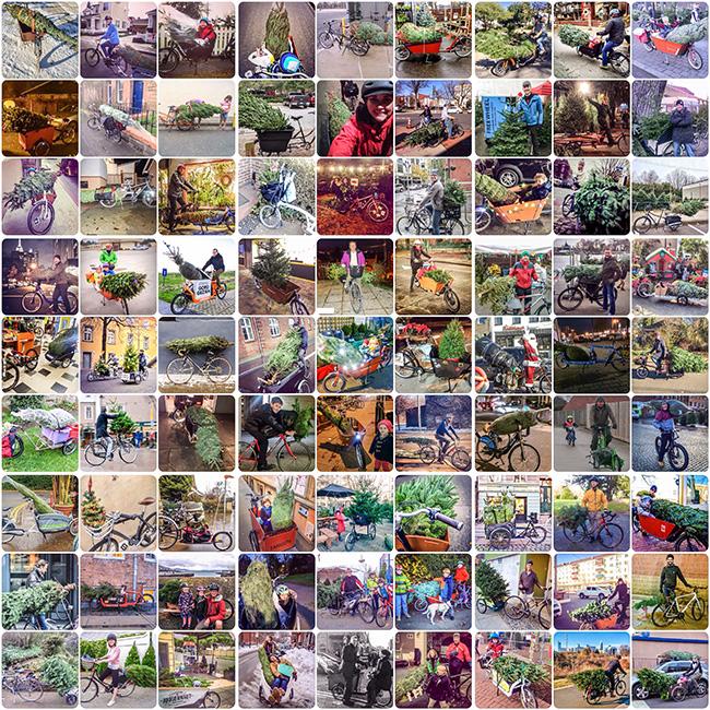 Modacity's 2014 collage.
