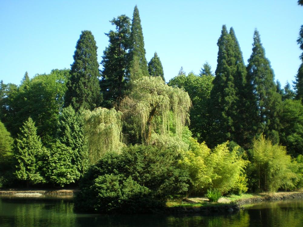 Laurelhurst Park, picnic spot