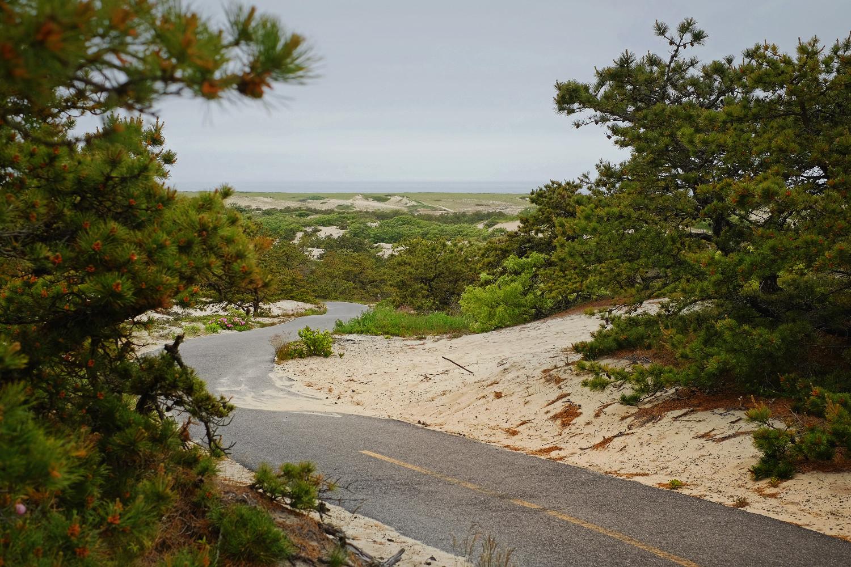 Photo Essay of Cape Cod's Casual Biking Getaway — bikabout