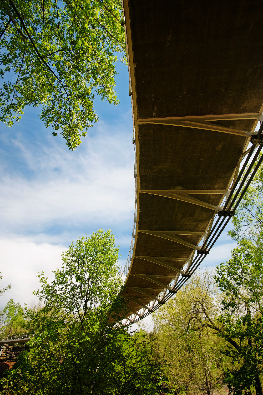Liberty Bridge over Falls Park