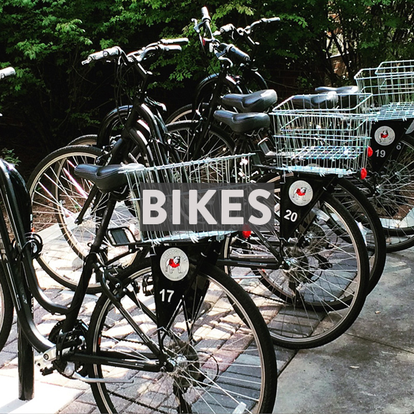 Bike Rentals in Athens