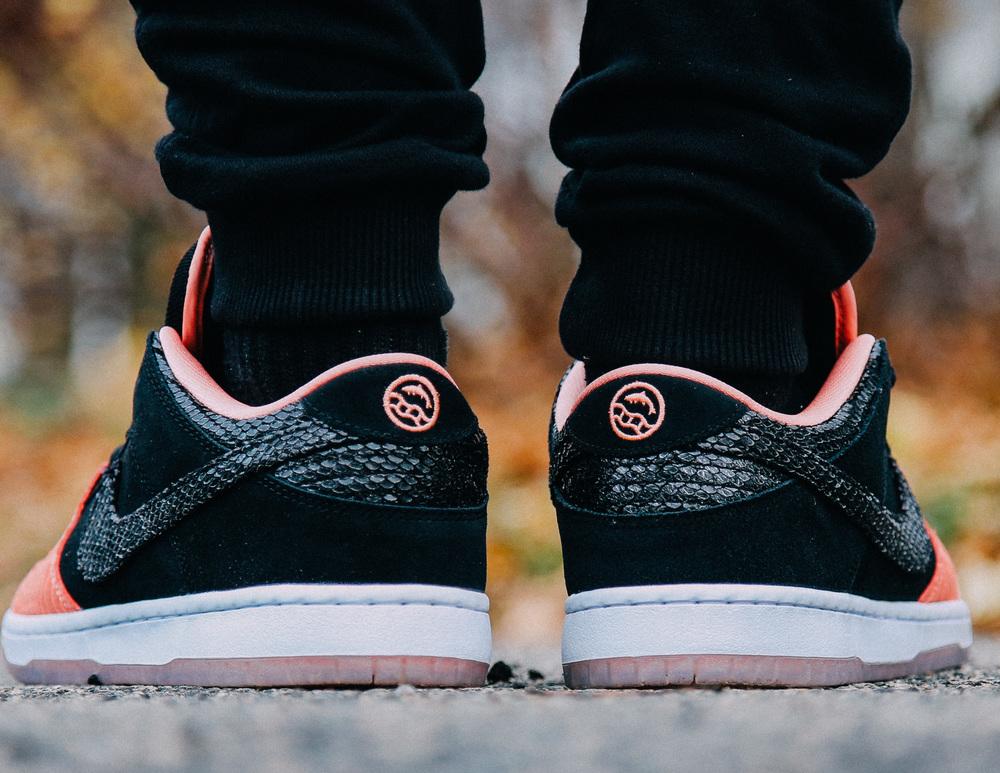 Premier-Skate-Nike-SB-Dunk-Low-Fish-Ladder-On-Foot-6943.jpg