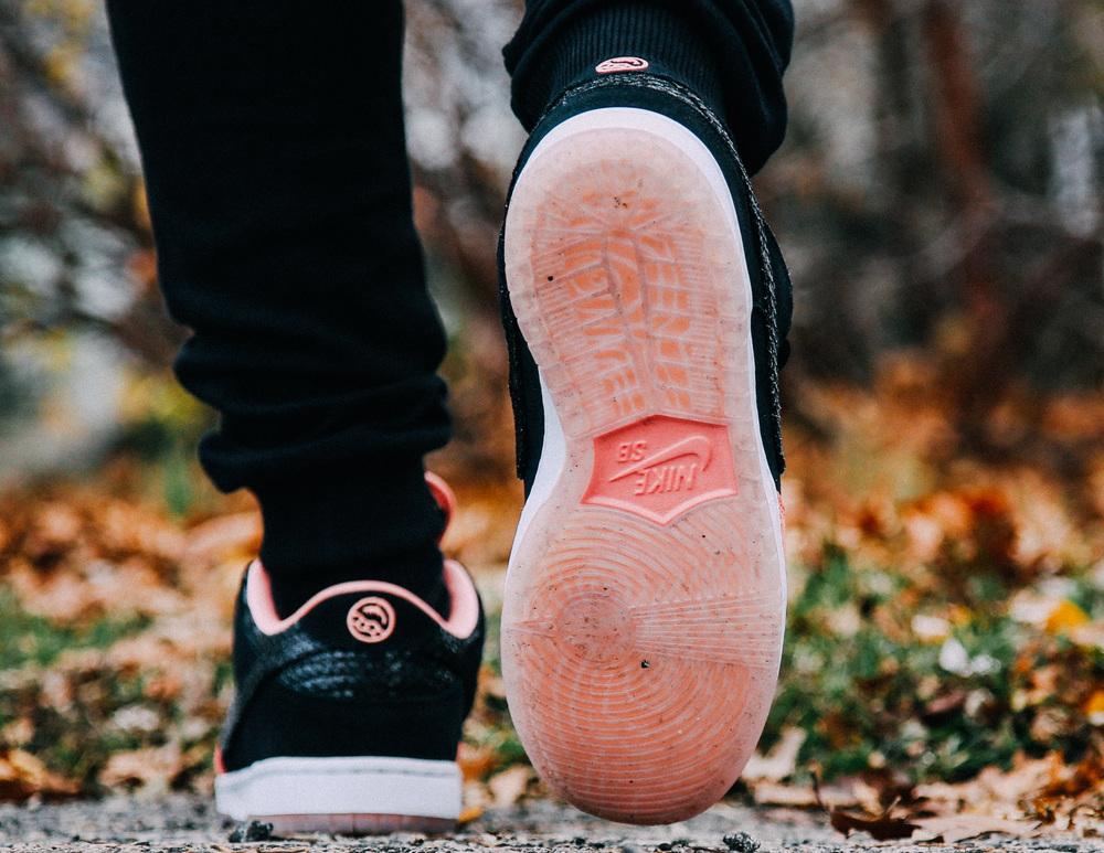 Premier-Skate-Nike-SB-Dunk-Low-Fish-Ladder-On-Foot-6947.jpg