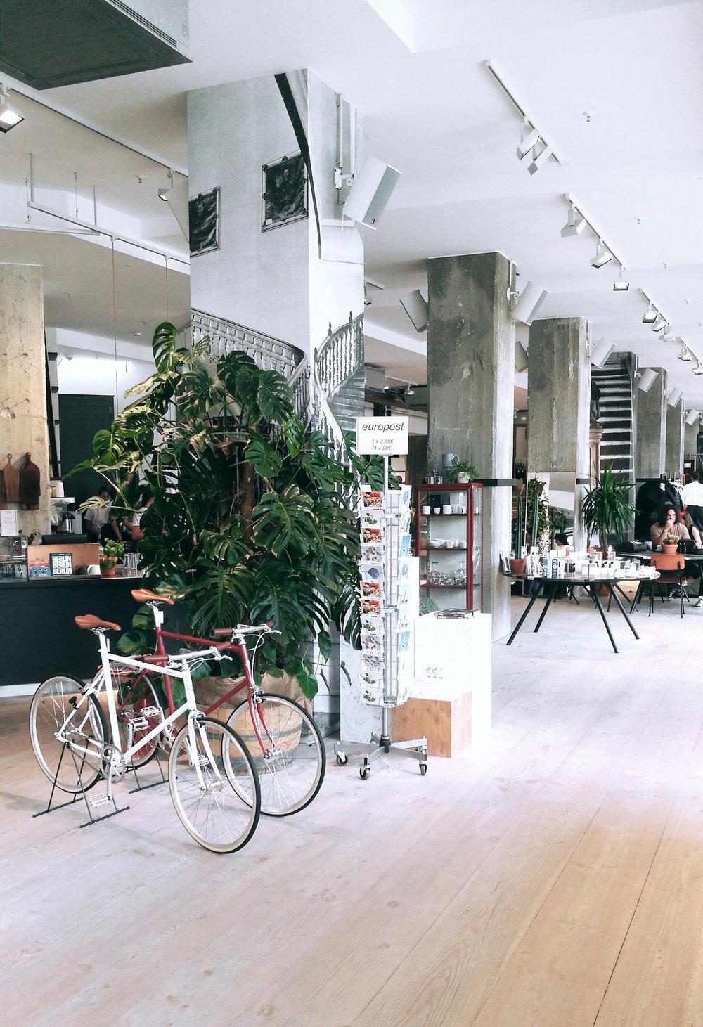 The Store 2.jpg