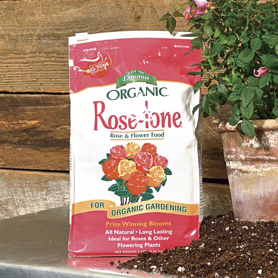 rosetone.jpg