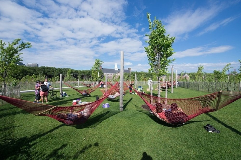 50 hammocks in a grove just for hammocks