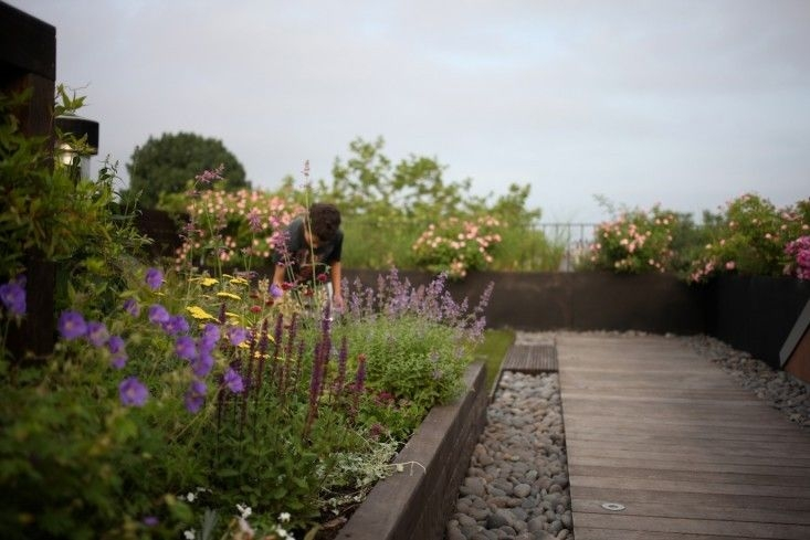 a highline garden for your home