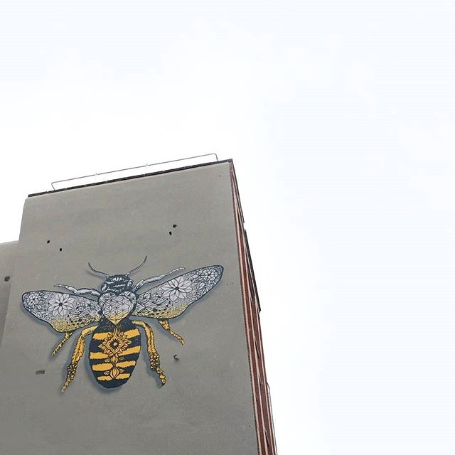 🐝 Mural . . . . . . . . . . . . . . . . . . . . #bees #archidaily #building #mcr #urbanphotography #lines #city #mnml #fujifilm #exploretocreate #thecreatorclass #manchester #cityscape #bee #stayandwander #insect #cityview #mural #streetart #justgoshoot #architexture