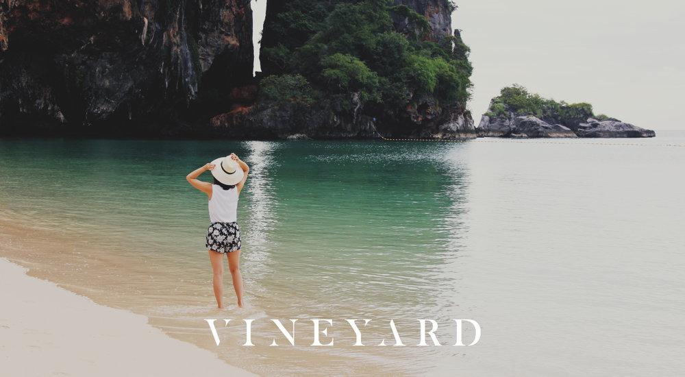 Vineyard.logo.2.jpg