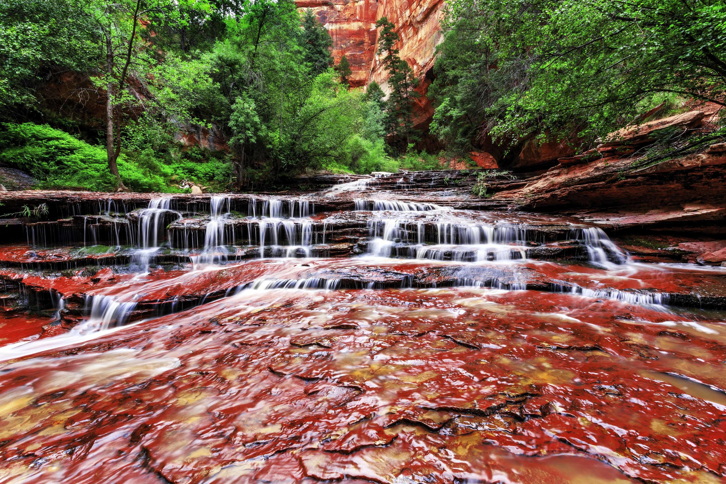 This broad waterfall marks the exit of the famous Subway canyon in Zion National Park.