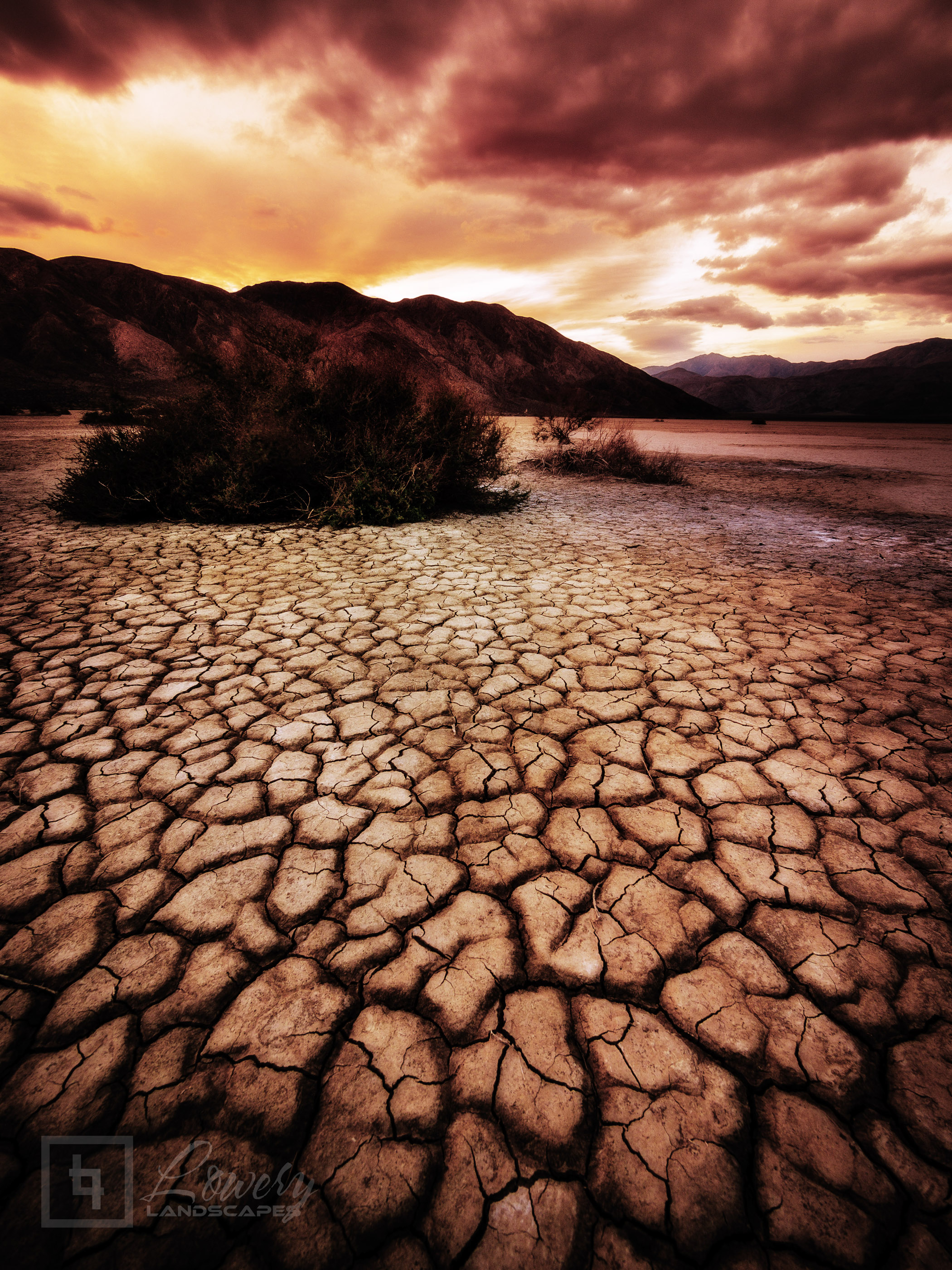The Clark Dry Lake in Anza-Borrego Desert State Park in Southern California is perpetually dry and cracked, much like the playas in Death Valley.