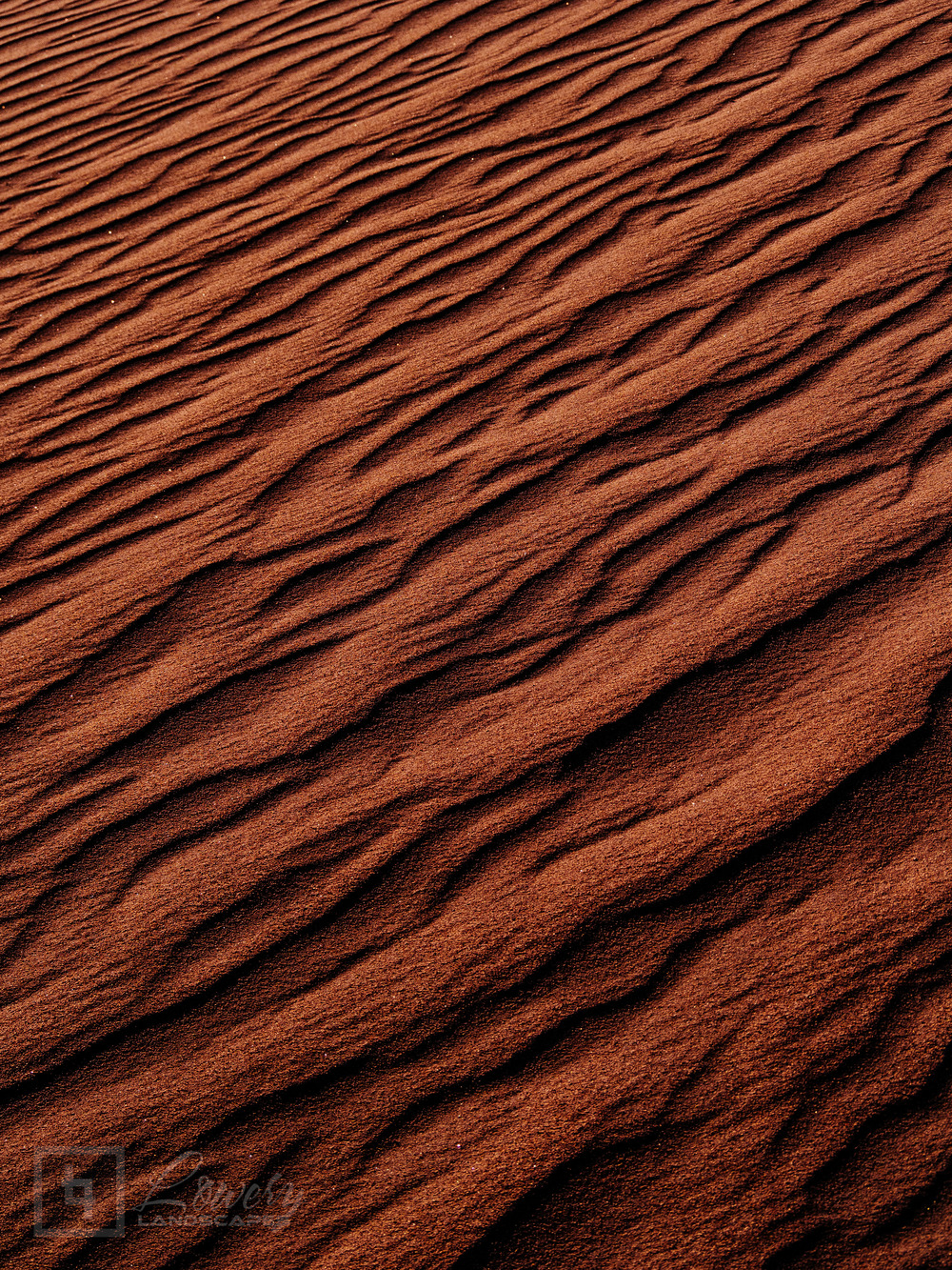 """Abstraction in Sand #1"" [click/tap to enlarge]"