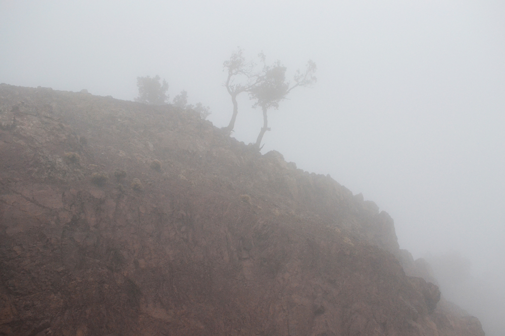 atlas_mountains_top_fog.jpg