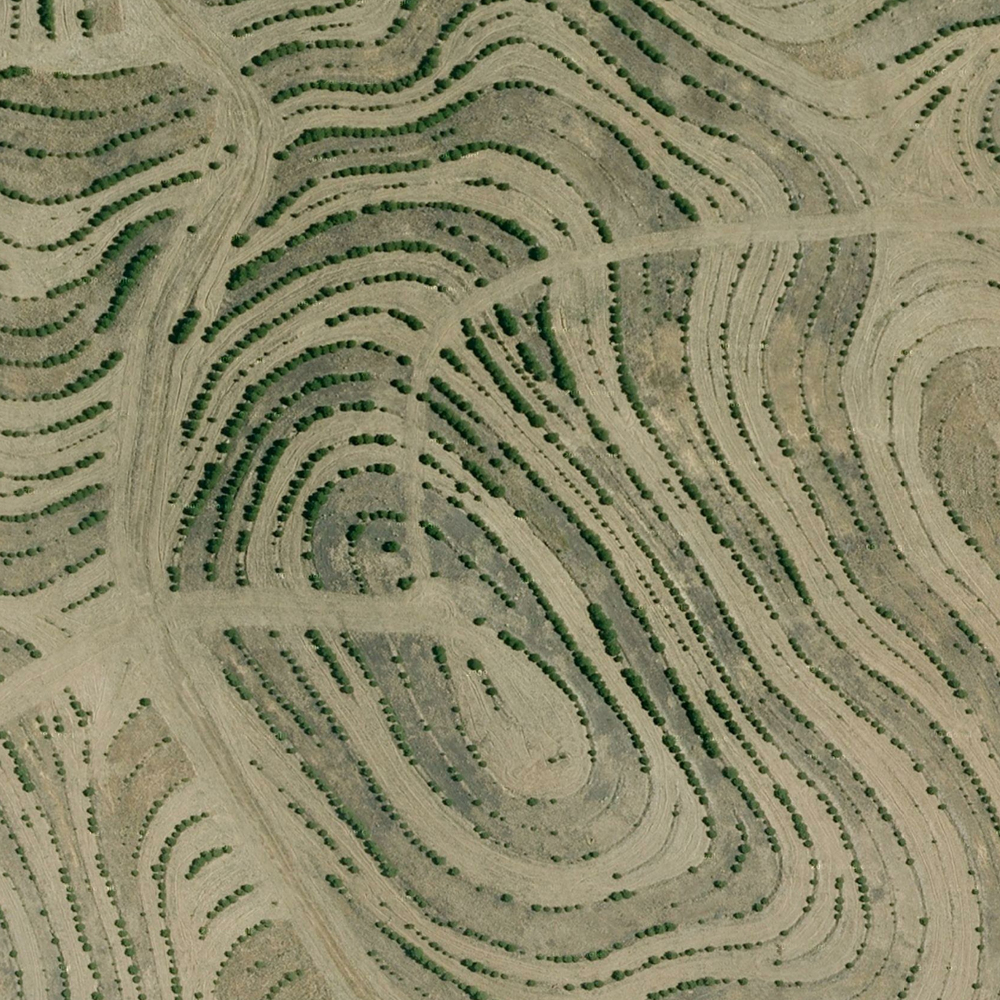 Earthpatterns2.jpg