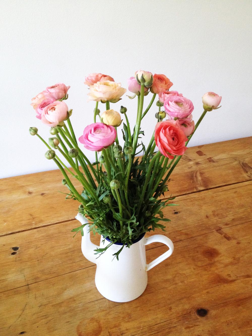 pink_flowers_hues