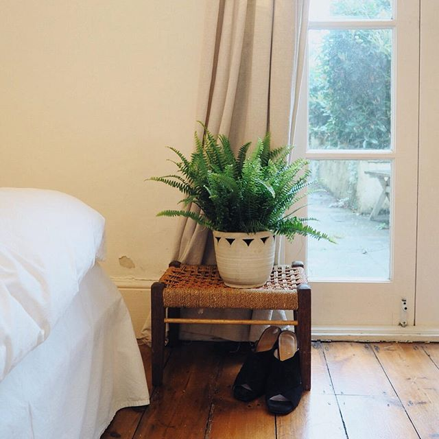 Little additions from the local charity shop: flower pot, woven stool and black suede mules! And a little fern from the flower shop. Slowly but surely settling in 😊✨ #ourlondoncottage