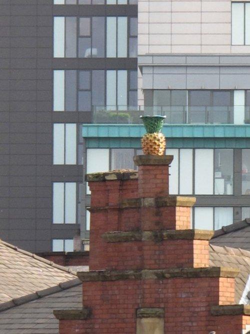 pineapple thomas street