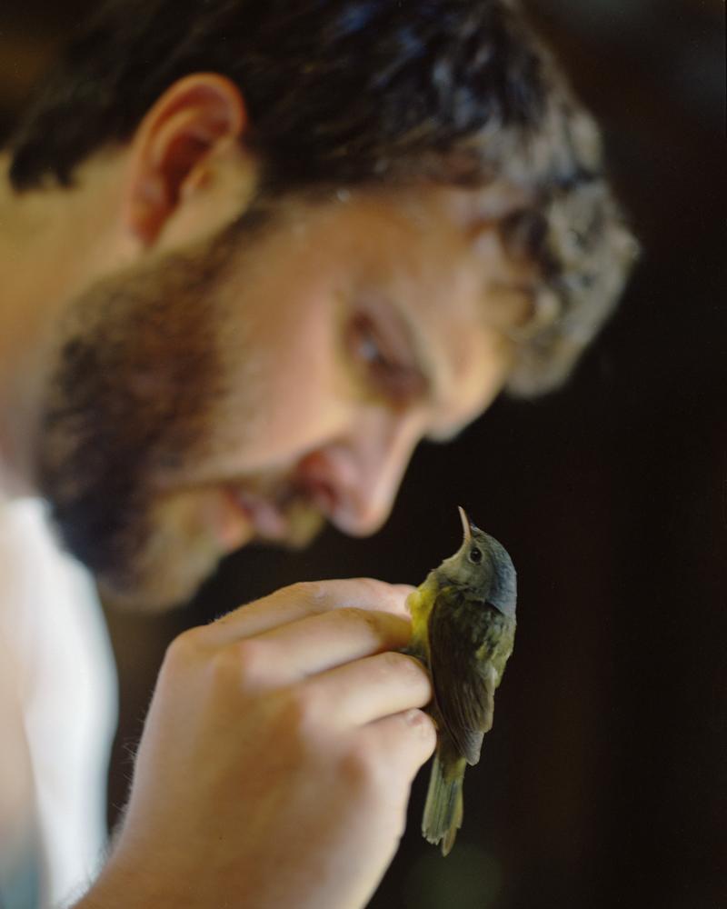 Kevin with Nashville Warbler