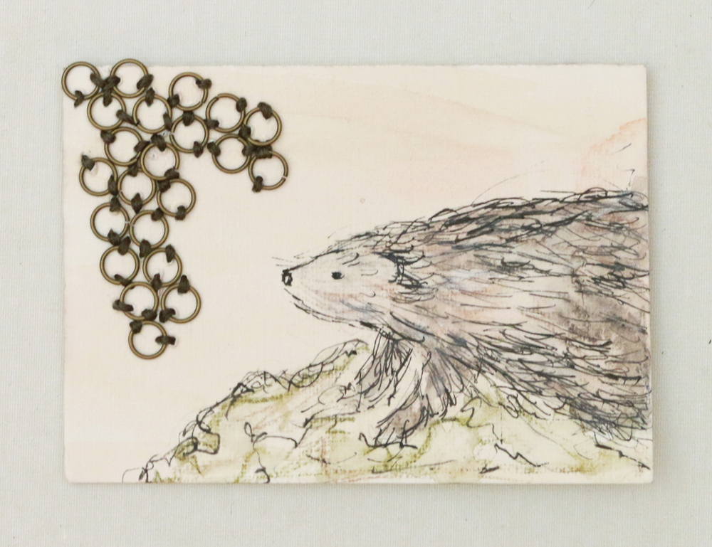 Lyme Porcupine