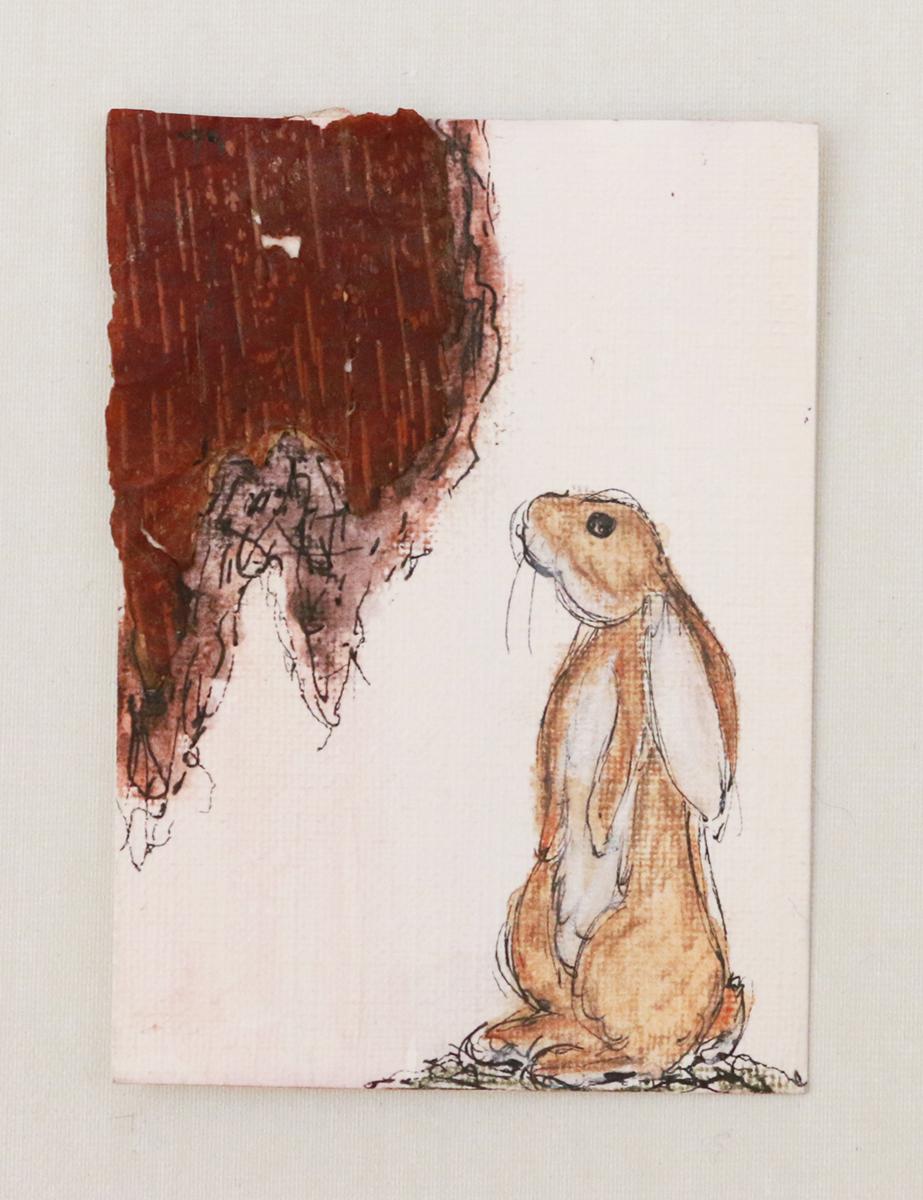Lyme Rabbit