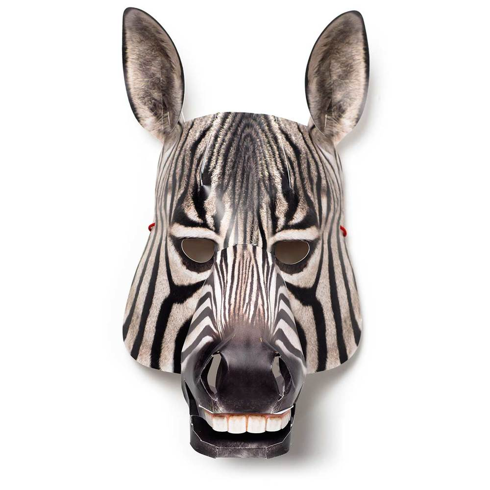 Zebra, zusammengebaut, Vorderansicht