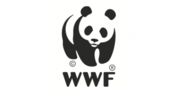 WWF-Best-Nonprofit-Logos-e1329714254182.png