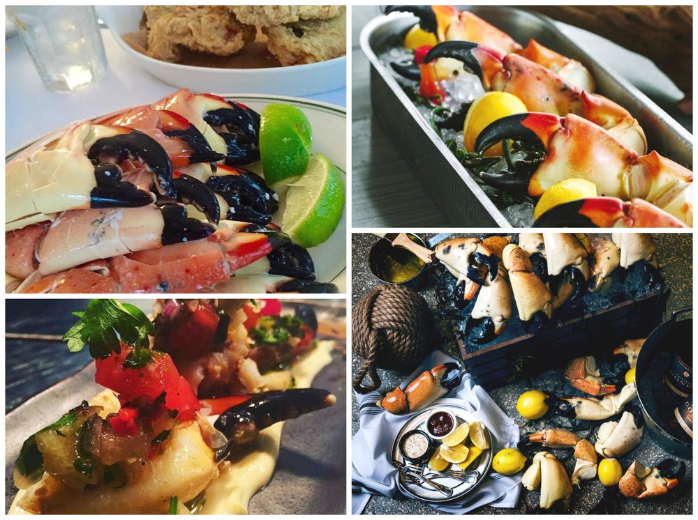 The Return of Miami Stone Crab Season 2016