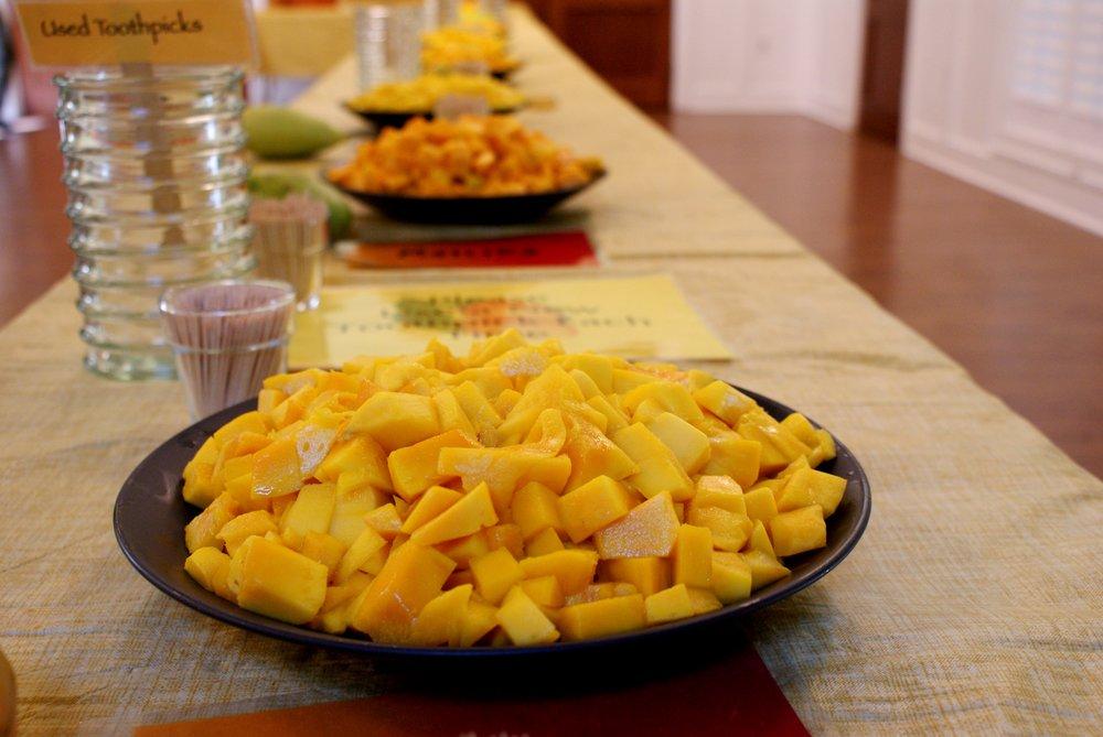 Mango tasting room 2.JPG
