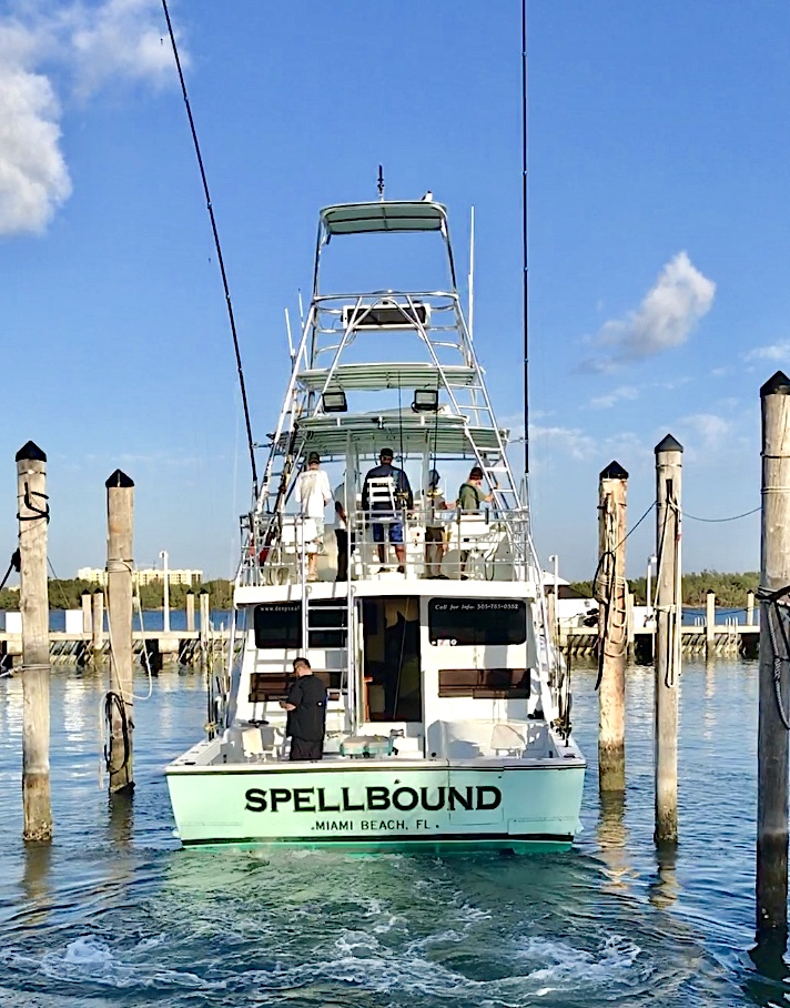 The Spellbound Deep Sea Fishing