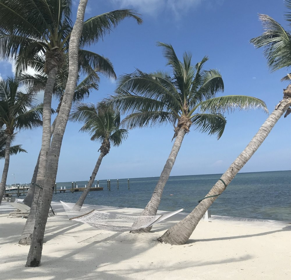 Amara Cay Resort Islamorada Florida Keys
