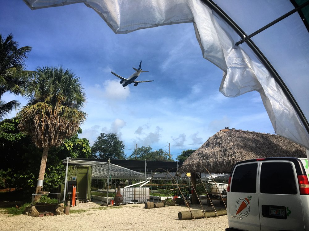 Harpke Family Farm FLL airport