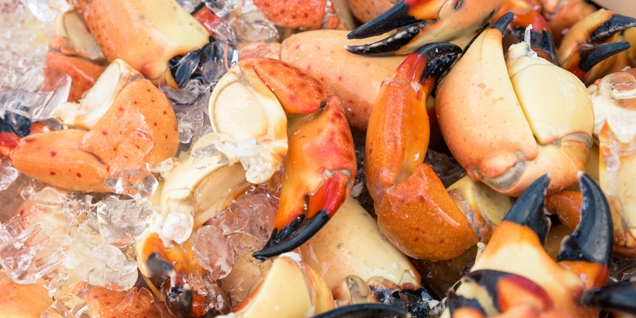 south-beach-seafood-festival-seafood.jpg