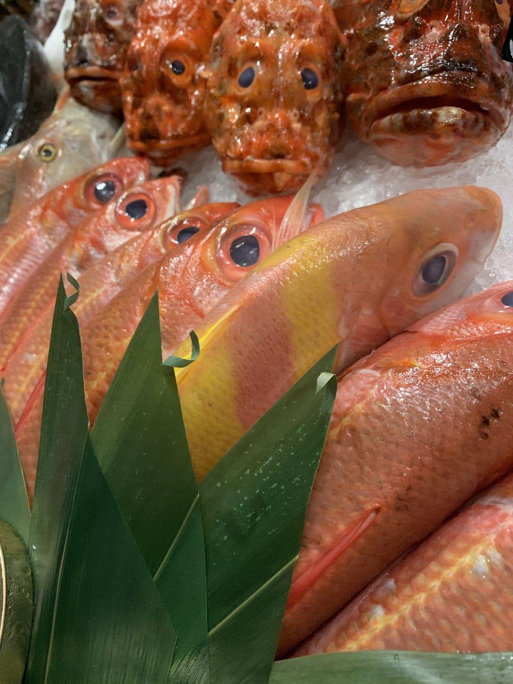 Novikov Miami Fresh Fish
