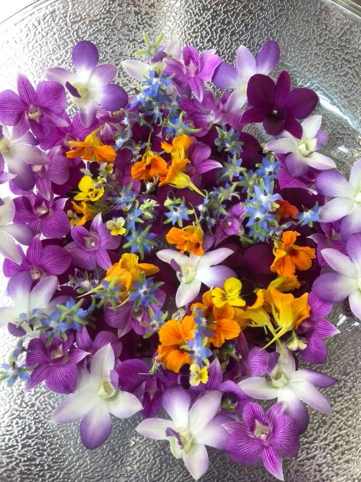 Edible Flowers from Florida Keys Garden: Photo Credit- Facebook