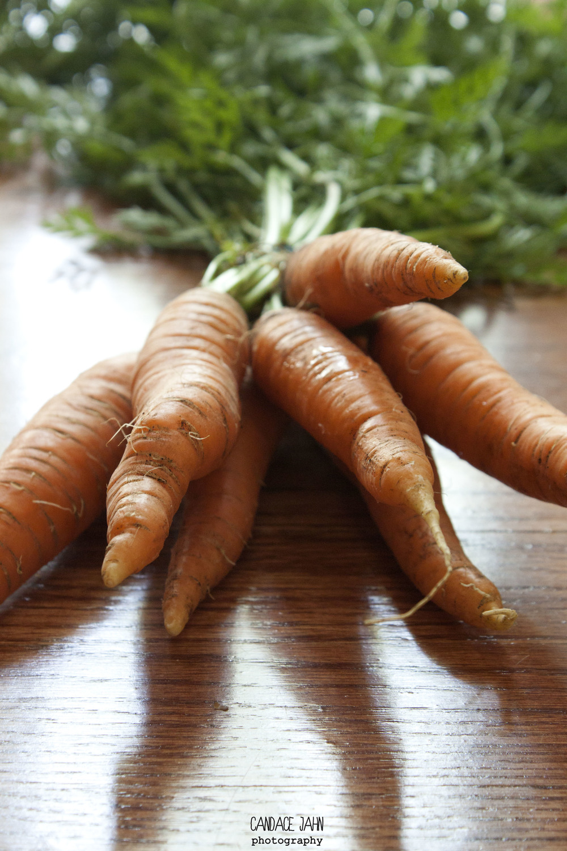 carrots_8078792652_o.jpg