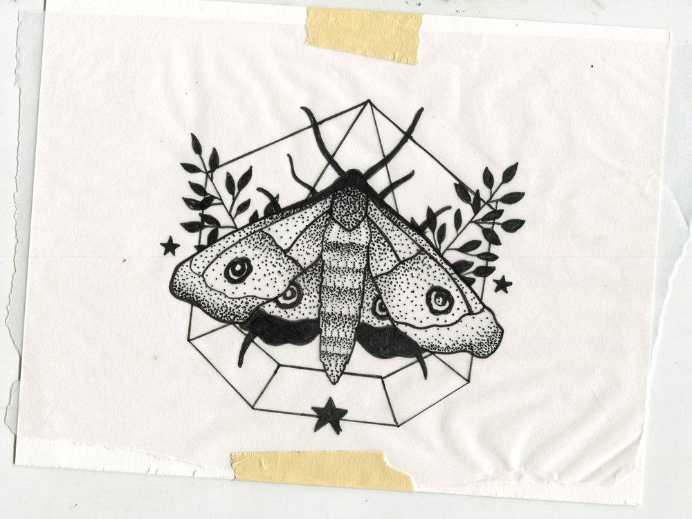 JV Popsocket Moth Drawing
