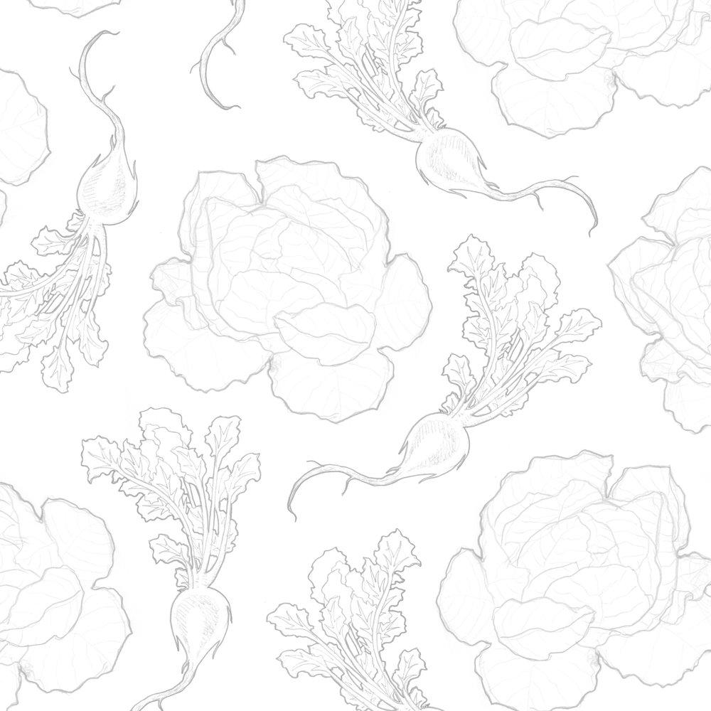 Veggie Drawing