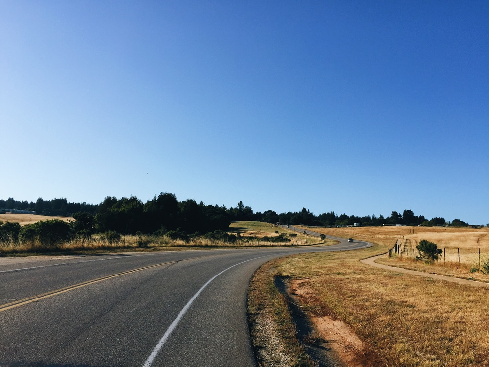 Biking through the UCSC Campus to stay with friends for the night