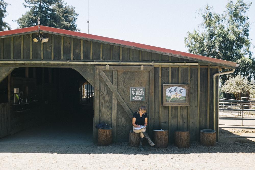 Barn Lindsey.jpg