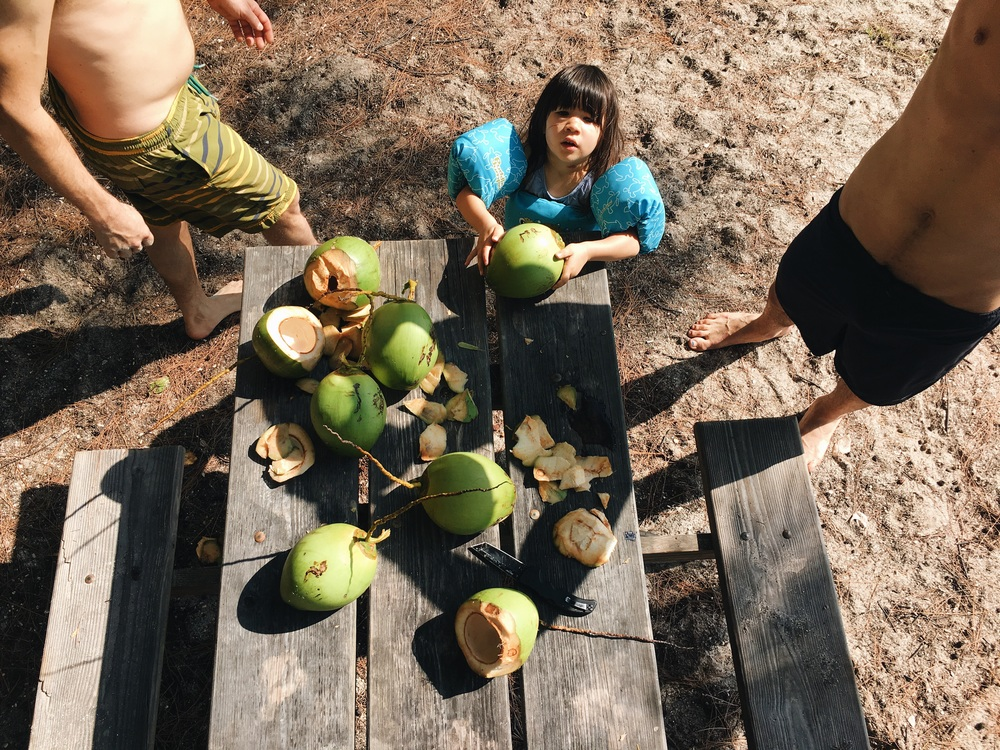 Thanks to Dorian's monkey skills, Heather and I ate at least 15 coconuts during the time we were there.