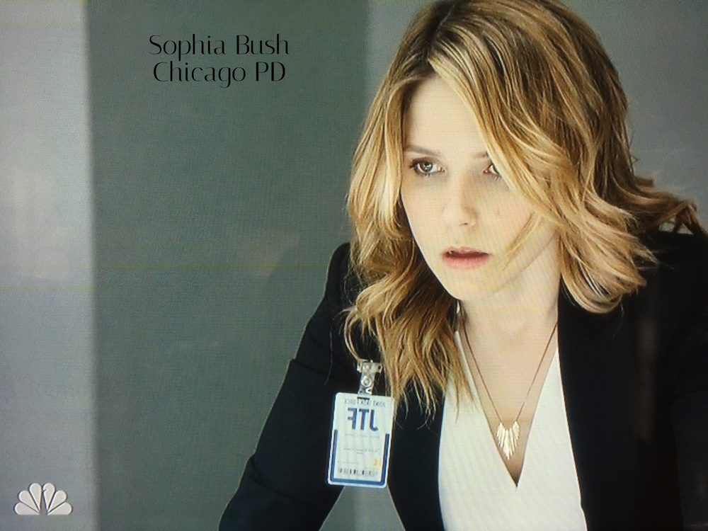JulesVanceFringe.SophiaBush.NBC-ChicagoPD.jpg