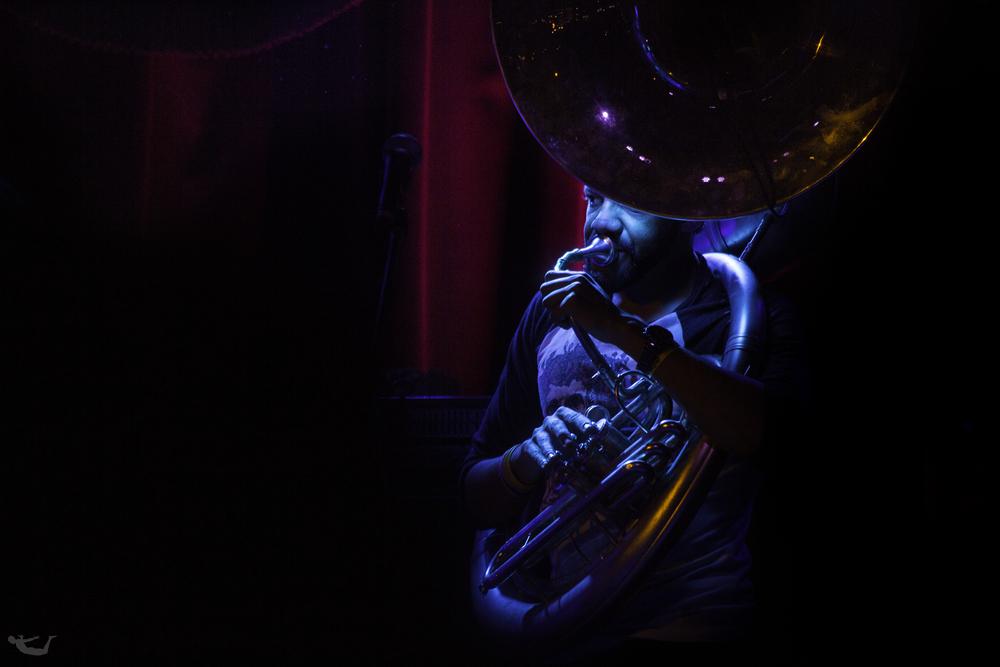 Real Horns.jpg
