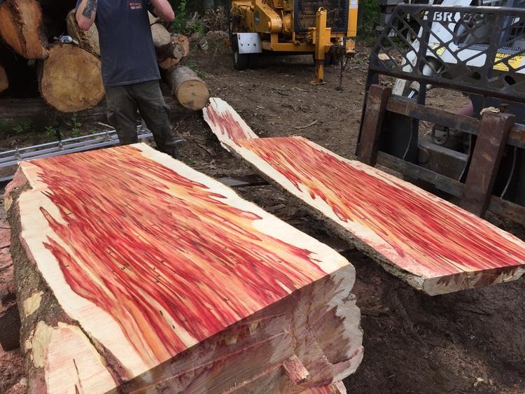 Live Edge Figured Box Elder Burl Lumber