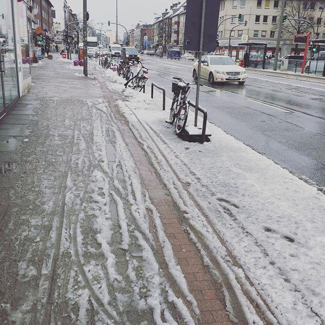 Snowy spring hier im Norden ☃️❄️❄️🌷🌸🌺💐🌼