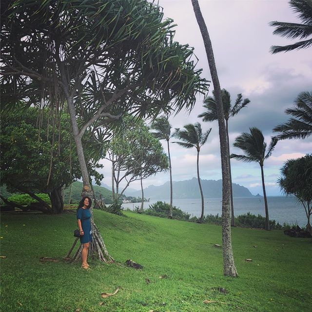 Remembering this peaceful moment on the east shore of O'ahu under the  hala tree. 😌 trying to stay calm during this busy week! #happyalohafriday #oahu #halatree #nostress #balance