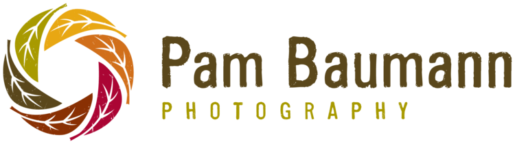 Pam Baumann Photography