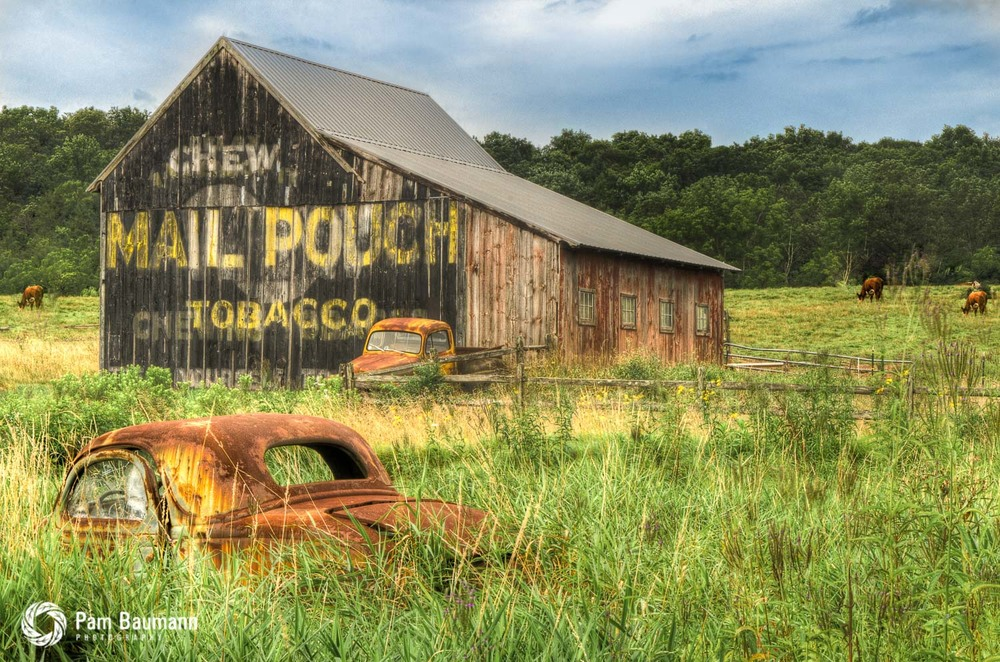 mail pouch barn abandoned pennsylvania rustic landscape photo - Scenic & Landscapes — Pam Baumann Photography