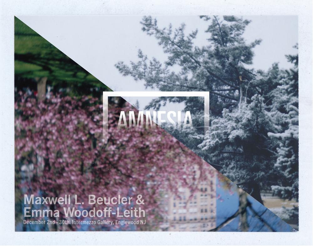 amnesia poster 4-01 copy.jpg
