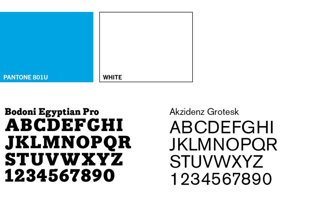 branding stuff .jpg
